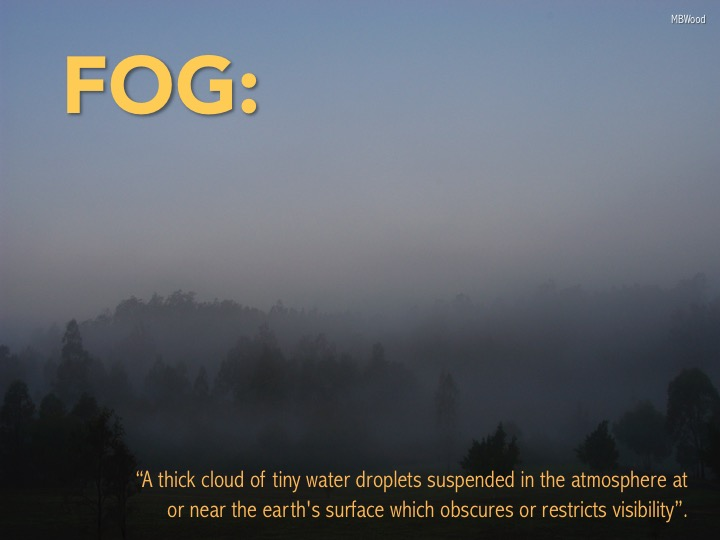 1 fog.jpg