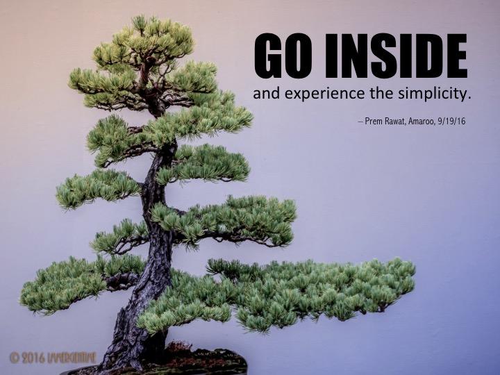 12. go inside.jpg