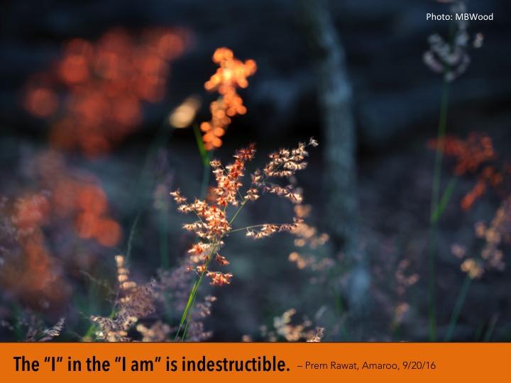 13. Indesctructible.jpg