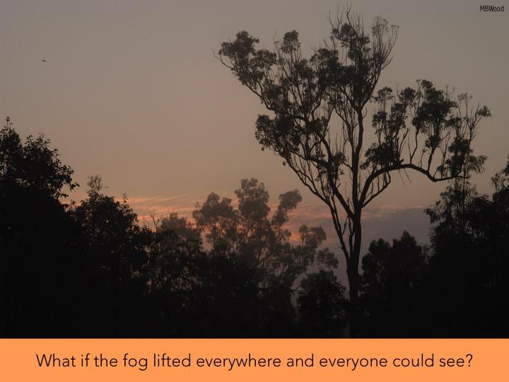 6 fog.jpg