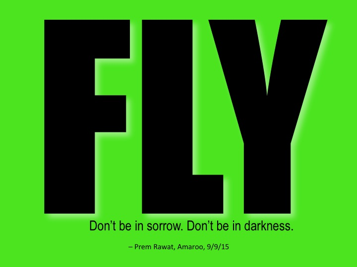 Flyy 3.jpg