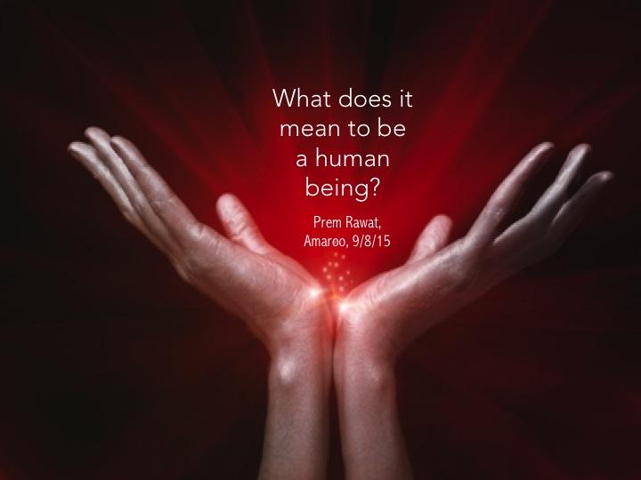 Human being.jpg