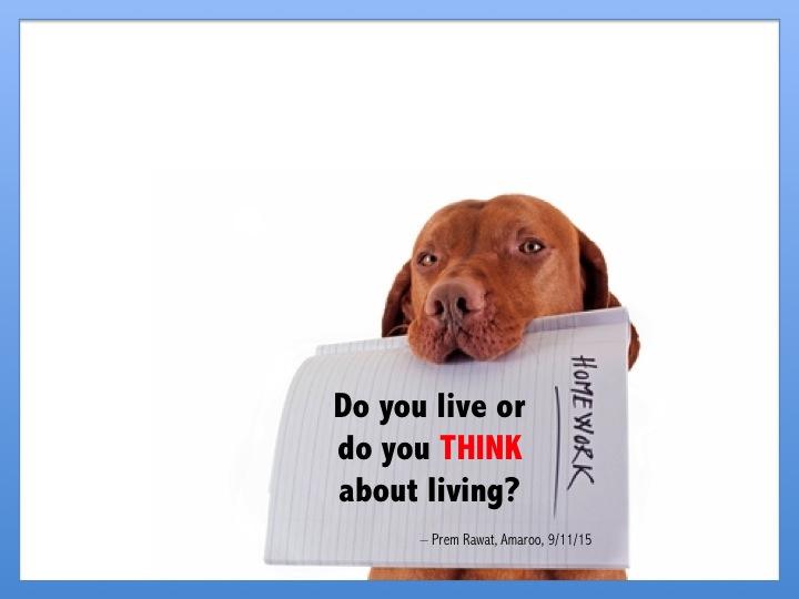 Think Living 18.jpg