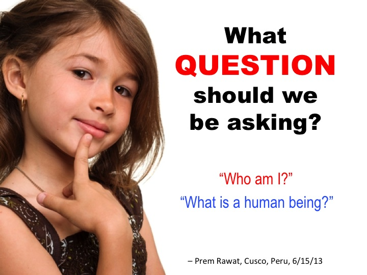 What Question.jpg