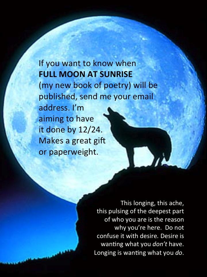 moon howl 2.jpg