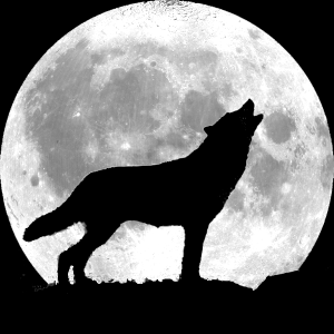 wolf-howling-full-moon.png