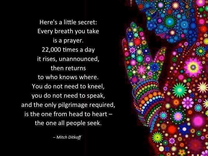 4. 22000 breaths.jpg