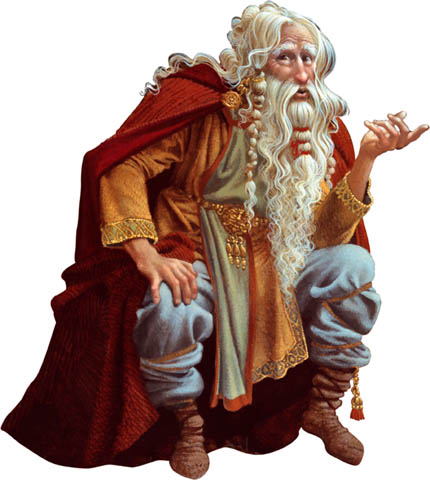 Wizard Storyteller copy.jpg