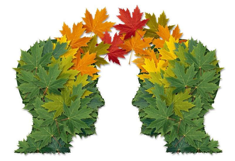 2 Heads Leaf.jpg