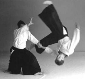 aikido-300x277.jpg