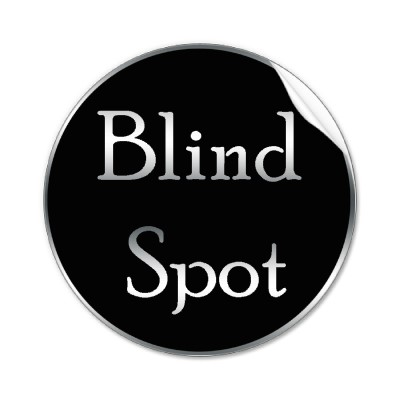 blind_spot_sticker-p217805598220859586qjcl_400.jpg