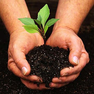 cover-gardening.jpg