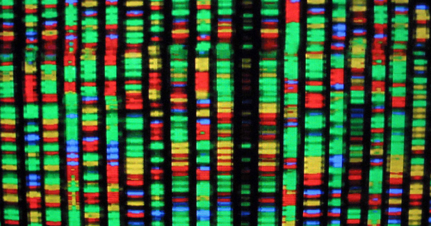 human-genome.jpg