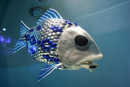 robo_fish.jpg
