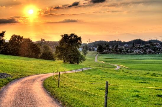winding-path.jpg